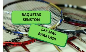 RAQUETAS BADMINTON PRINCIPIANTES